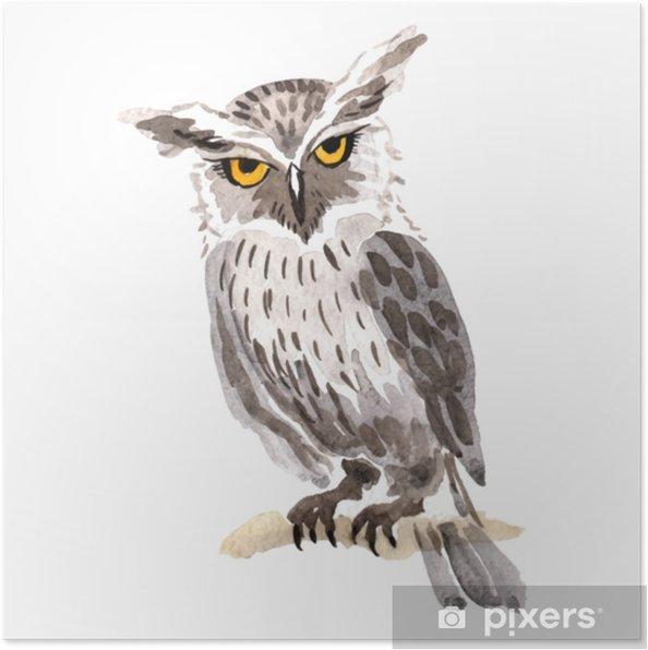Plakat Niebo Ptak Sowa W Przyrodzie Przez Wektor Styl Na Białym Tle Dzika Wolność Ptak Z Latającymi Skrzydłami Aquarelle Ptak Dla Tła Tekstury