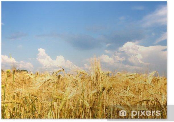 Plakat Niwa - Rolnictwo