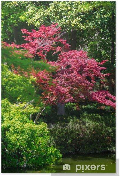 Plakat Ogród japoński - Drzewa