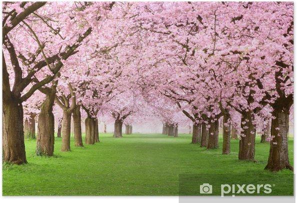 Plakat Ogrody kwitną w całości - Przeznaczenia