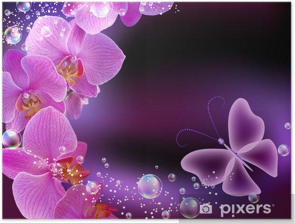 Plakat Orchid i motyl - Tematy