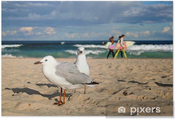 Plakat Owena Bondi Beach - Oceania