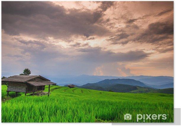 Plakat Paddy w zachodzie słońca, Chiangmai prowincji Tajlandii - Rolnictwo