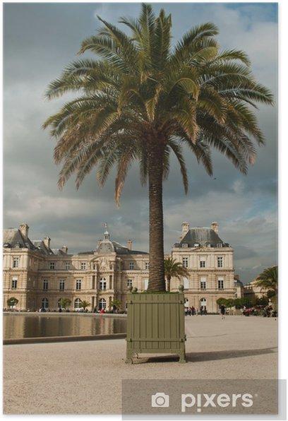 Plakat Palm Ogród Luksemburski w Paryżu - Miasta europejskie