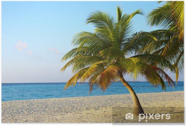 Plakat Palmtree jest na tropikalnej plaży - Woda