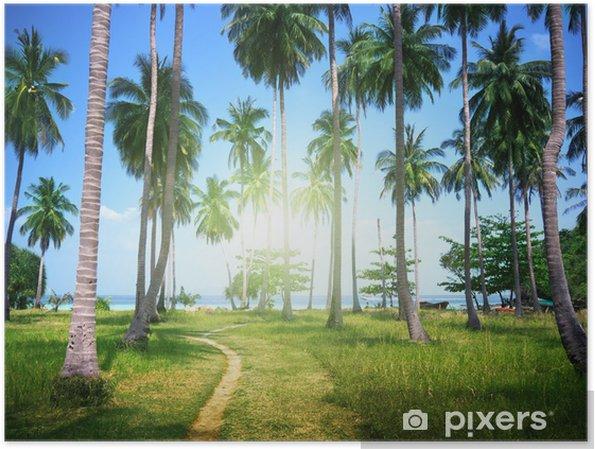 Plakát Palmy na pláži ostrova Phi Phi, Thajsko - Roční období