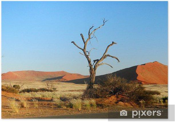 Plakat Panorama Namib Desert - Pustynie