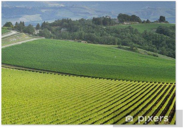 Plakat Panoramiczny widok z winnicy w zielonej Toskanii - Europa