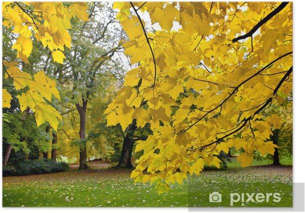 Plakát Park na podzim - Roční období