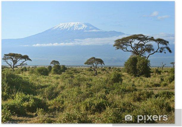 Plakat Park Narodowy Amboseli - Wakacje