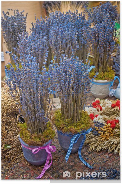 Plakat Pęczek kwiatów lawendy na drewnianych tabeli - Kwiaty