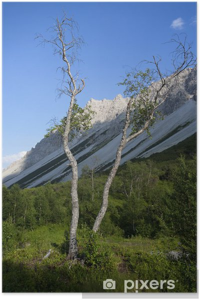Plakat Pejzaż górski Tyrol - Góry