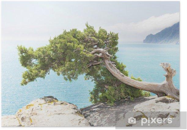 Plakat Pejzaż morski - Europa