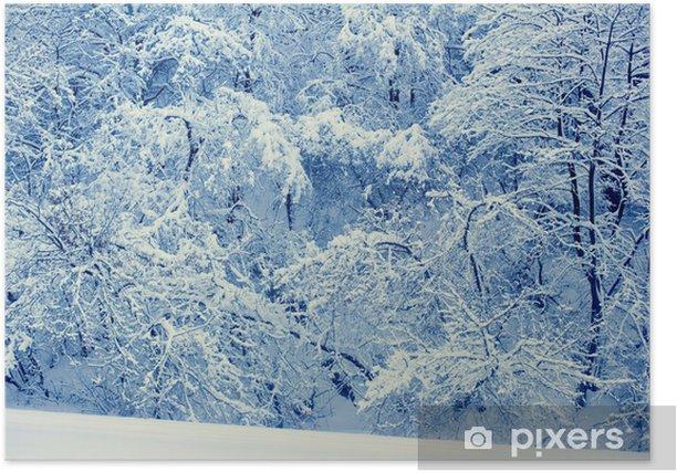Plakat Piękna dzikiego lasu pokryte śniegiem - Pory roku