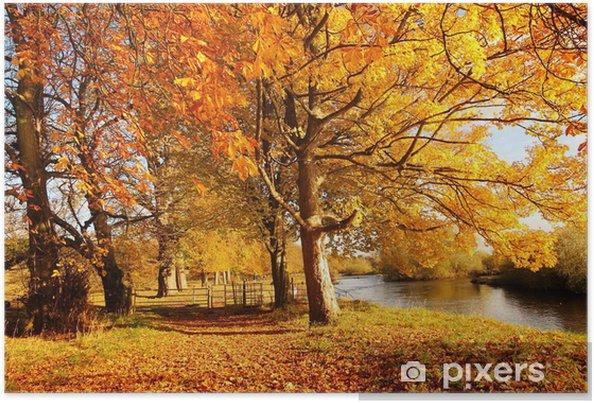 Plakat Piękna jesień w parku, Szkocja - Pory roku
