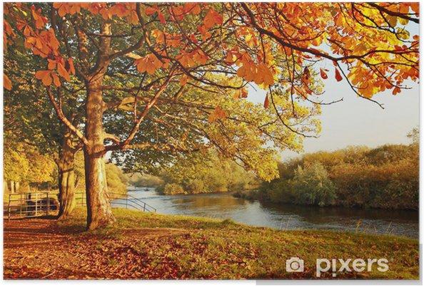 Plakat Piękna jesień w parku - Przeznaczenia