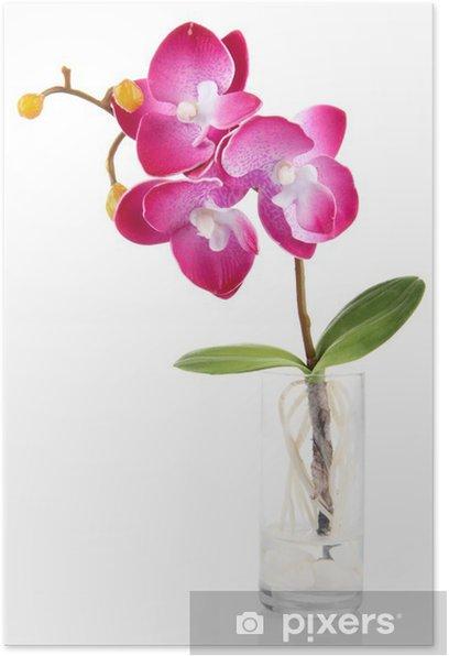 Plakat Piękna sztuczna orchidea, na białym tle - Kwiaty