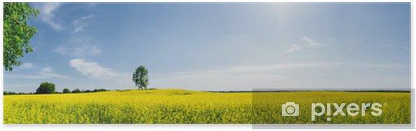 Plakat Piękna wiosna panoramiczny - Pory roku