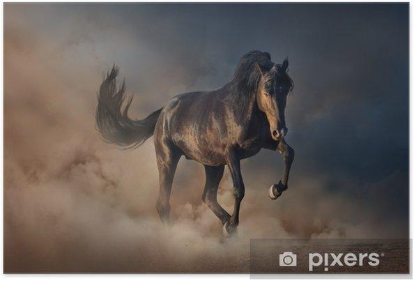 Plakat Piękny czarny ogier uruchomić w pył pustyni przed zachodem słońca niebo - Zwierzęta