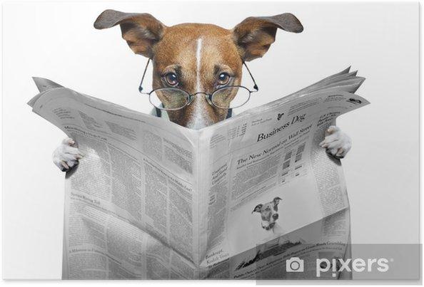 Plakat Pies czyta gazetę - Tematy