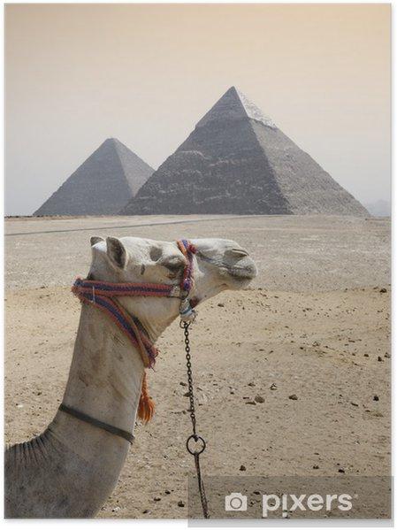 Plakat Piramides - Afryka
