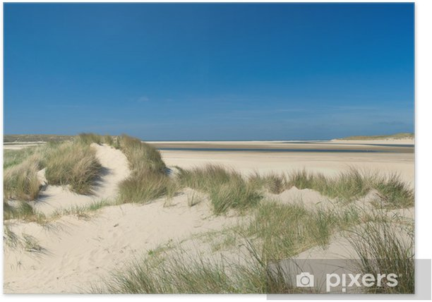 Plakát Písečné duny na pobřeží - Témata