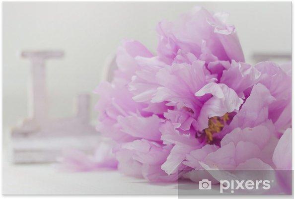 Plakat Piwonia i miłość - Kwiaty