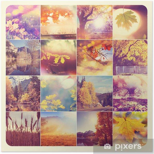 Plakát Podzim koláž - Stromy