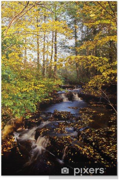 Plakát Podzimní potok - Roční období