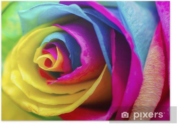 Plakát Poetic Rose - Témata