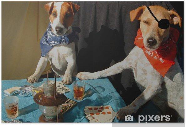 Plakat Poker Critter gwiazda - wersja kolorowa - Zwierzęta
