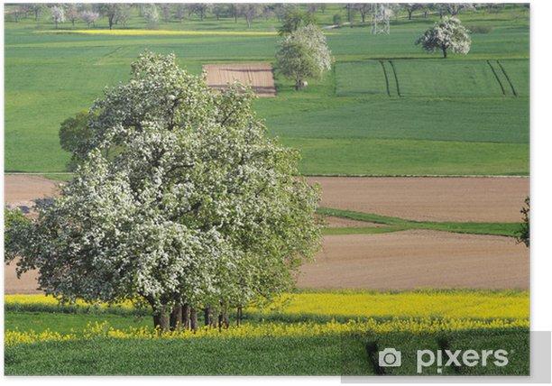 Plakat Pole rzepaku i kwitnących drzew owocowych - Pory roku