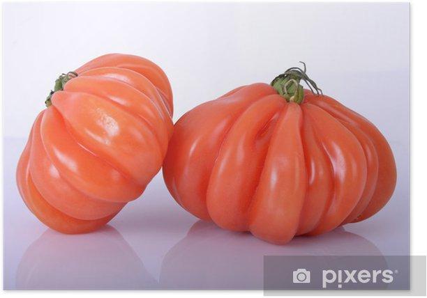 Plakat Pomidor befsztyk - Solanum lycopersicum - Tematy