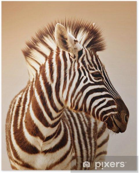 Plakat Portret zebra - Zebry