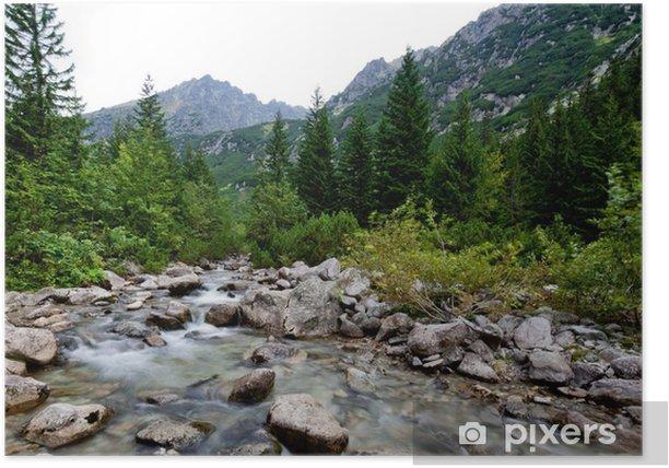 Plakat Potok górski - Europa