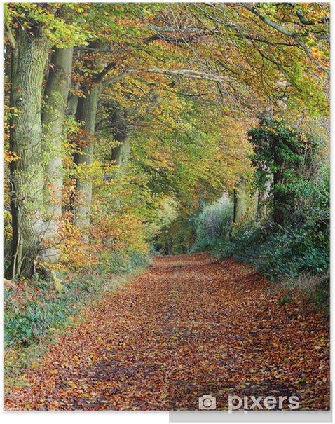 Plakat Późną jesienią w angielskim Wood - Tematy