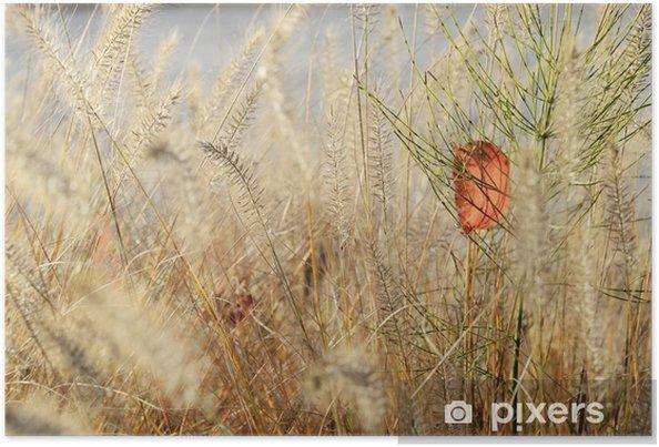 Plakát Přírodě závod na pozadí - Rostliny a květiny