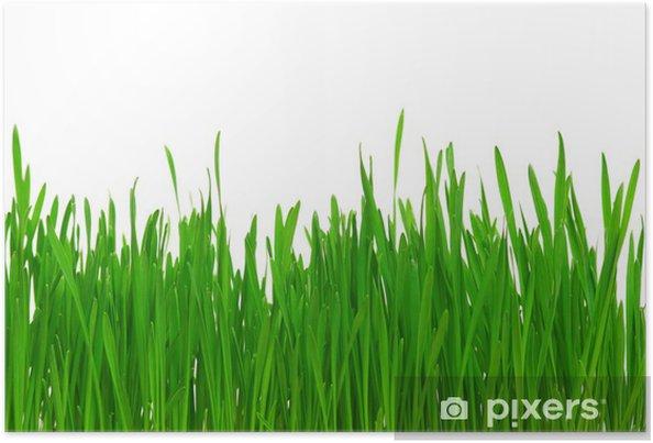 Plakát Pšeničné trávy - Roční období