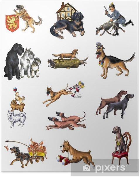 Plakát Psi - Savci