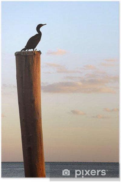 Plakat Ptak na słupie - Ameryka