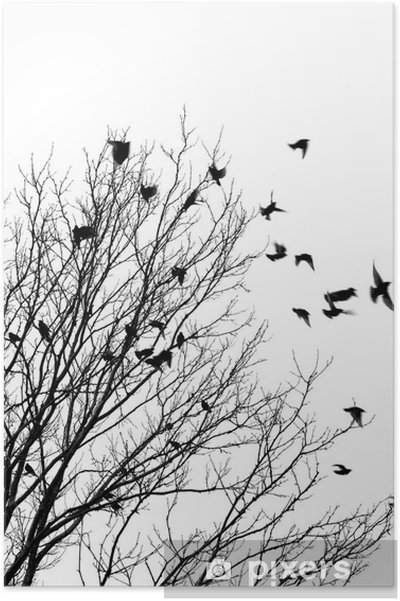 Plakat Ptaki latające - Style