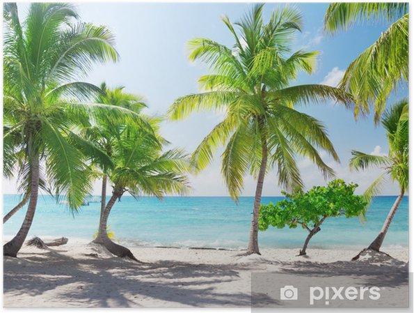 Plakat Rajska wyspa na Dominikanie - Tematy