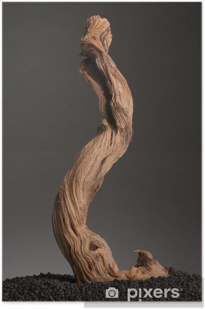 Plakát Roots abstrakce - Přírodní krásy