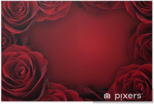 Plakat Róża pełne tło - Tła