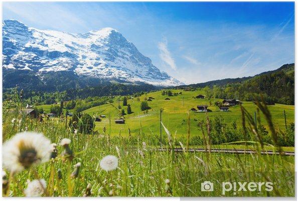 Plakát Rozkvetlé květy s krásné švýcarské krajiny - Evropa