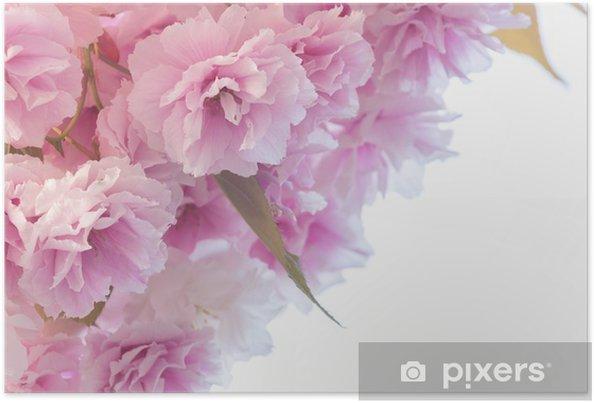 Plakat Różowe kwiaty - Kwiaty