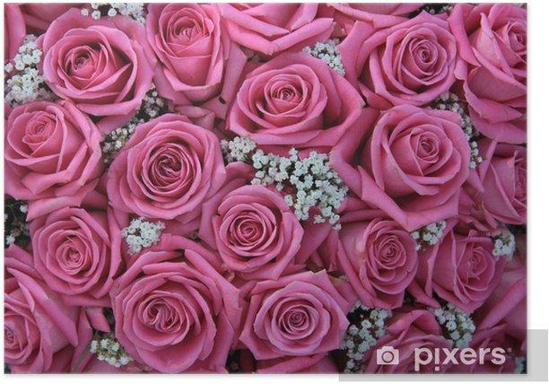 Plakat Różowe róże i białe Gypsophila - Tematy