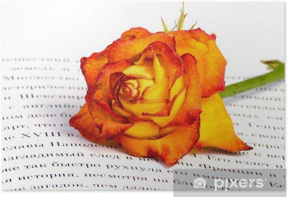 Plakat Różowy - Tematy