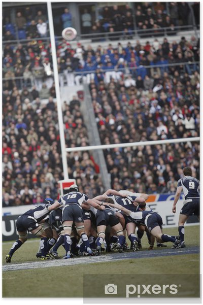 Plakat Rugby - Rugby