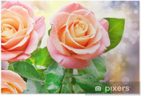 Plakát Růže květ - Květiny